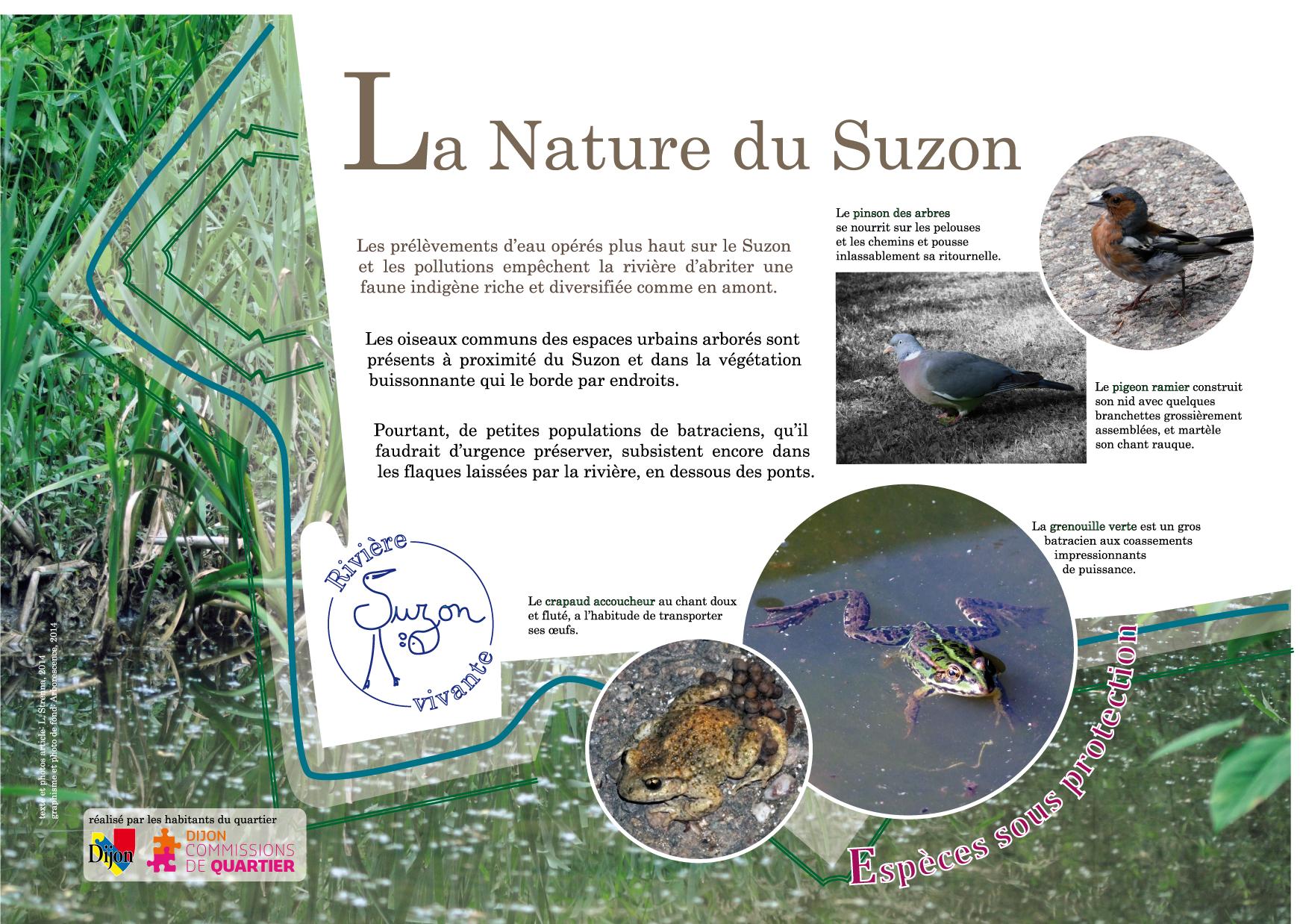 nature-LS