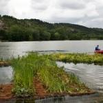 2011-06-environnement-la nature dnas ta ville-éducation-fontaine d'ouche-lac kir-JJ-dijonscope-11
