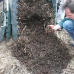 Évaluation de la maturité du compost