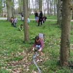 ecureuillon-marchant-sur-branche2