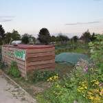 Compostage partagé aux jardins familiaux de Quetigny - les bacs et l'andain